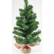 "24 "" Canadian Pine Tree W / Burlap Base"