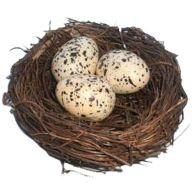 "3.5 "" Birds Nest W 3 Eggs ( Pk / 6 )"