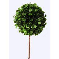 "5 "" Dia Plastic Boxwood Topiary 12 "" H - Green"