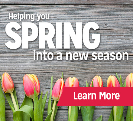 Spring Into a New Season